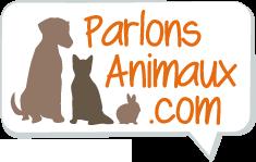 Parlons Animaux : les animaux ont la parole !